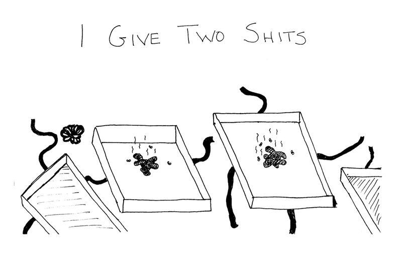 Twoshits