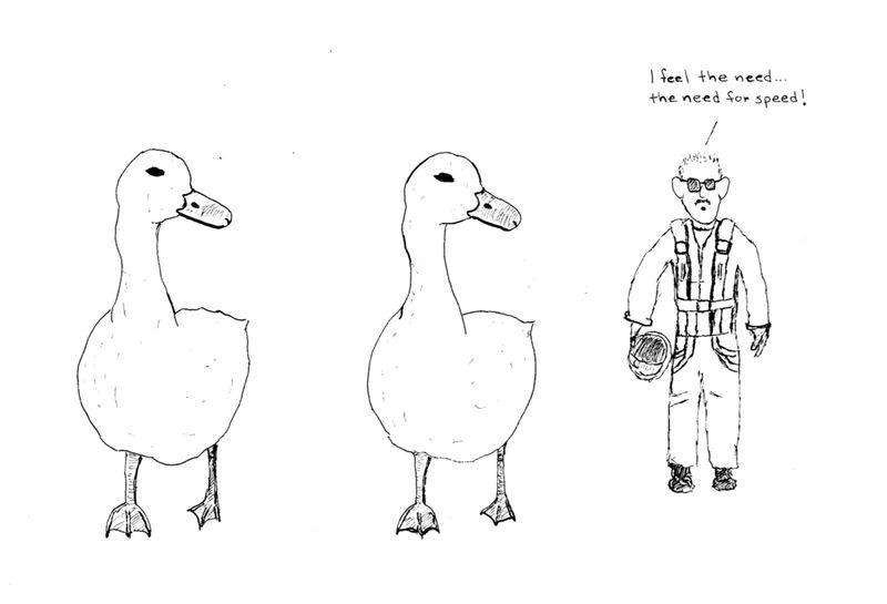 Duckduckgoose