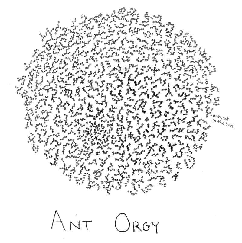 Antorgy