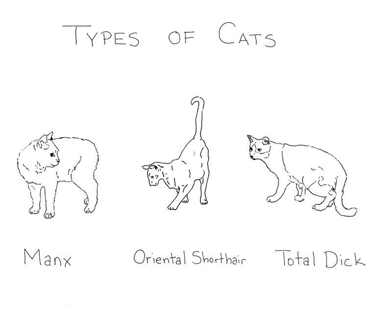 Typesofcats