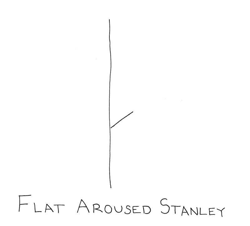 Flatarousedstanley