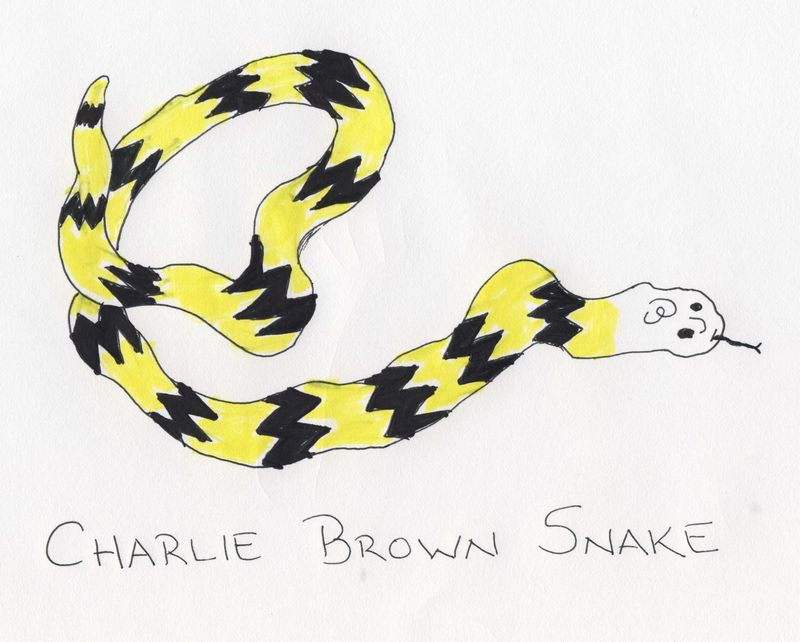 Charliebrownsnake