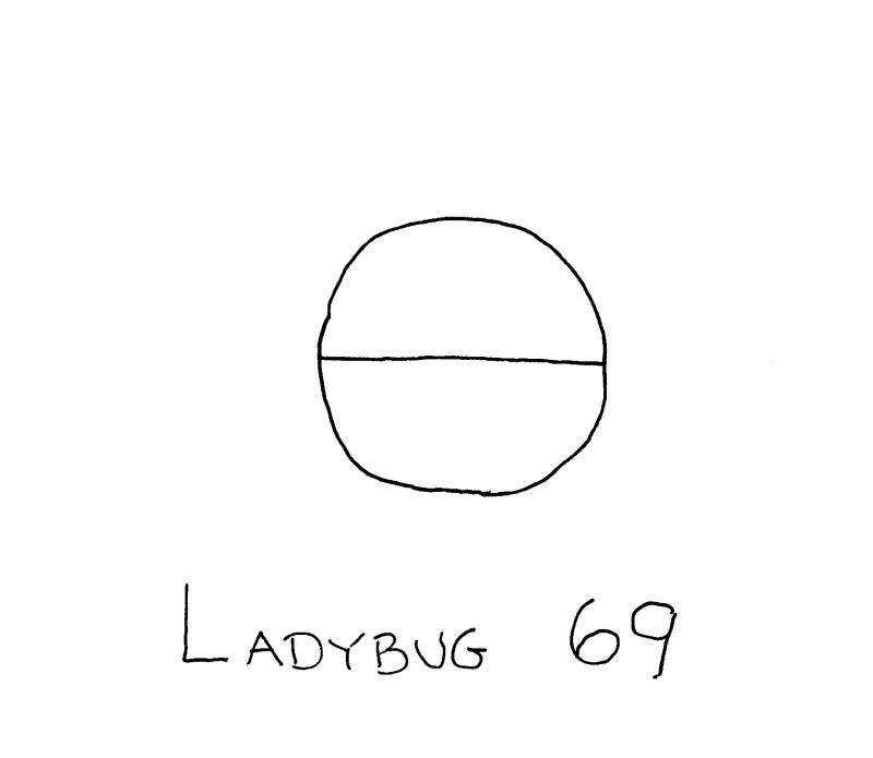 Ladybug69