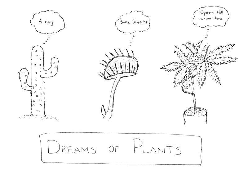 Plantdreams