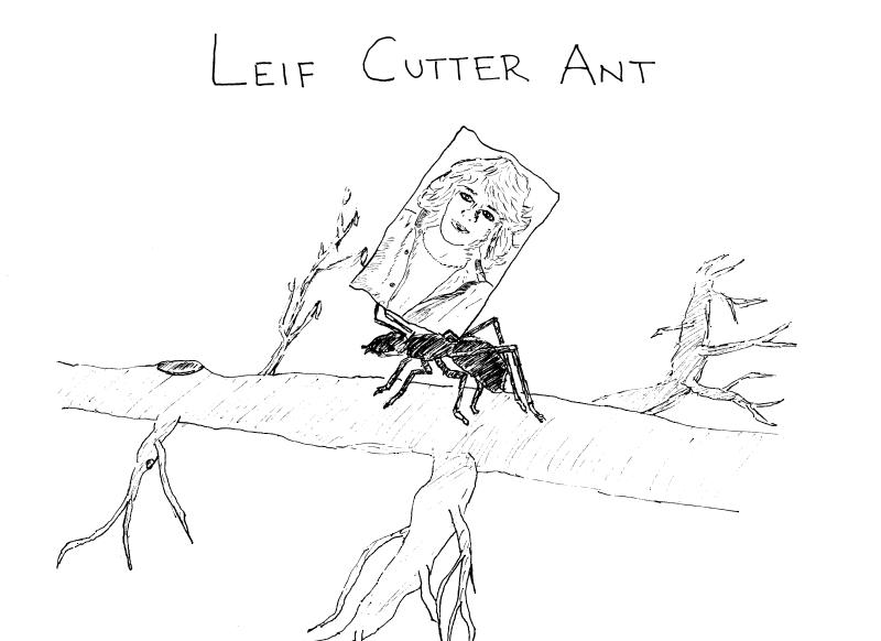 Leifcutter