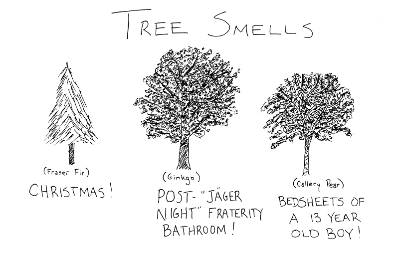 Treesmells